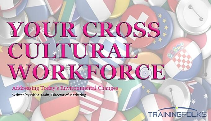 cross cultural training program